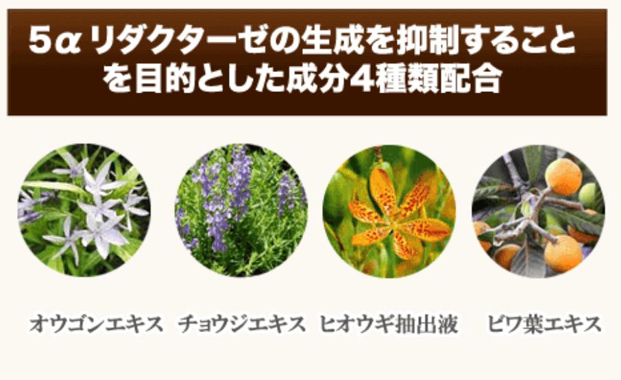 「5αリダクターゼ」の生成の抑制が期待できる4種類の成分