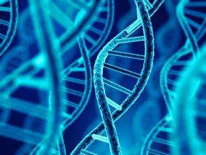 世界一わかりやすい「ハゲが遺伝する仕組み」|プロが図で解説