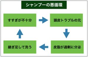 シャンプーの悪循環の例