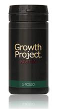ボストン(BOSTON)のイメージ