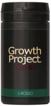 ボストンのイメージ