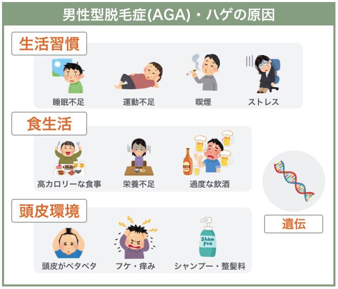 男性型脱毛症(AGA)の原因