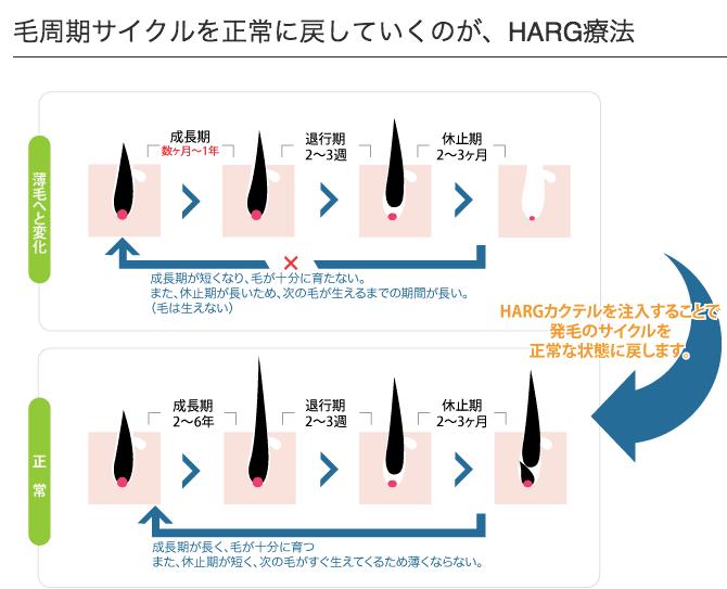 HARG療法の仕組み