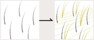 ビューティアッププラチナ ラインのイメージ図
