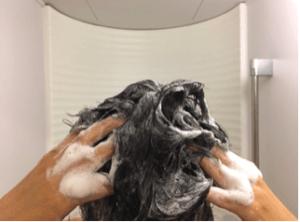 haruシャンプーの髪通りイメージ