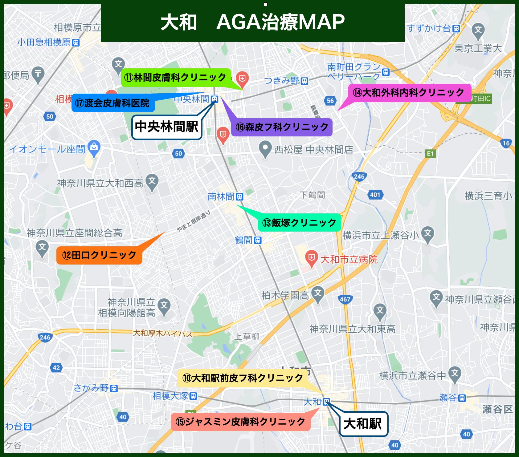 大和 AGA治療MAP