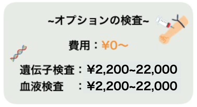 オプション検査の費用