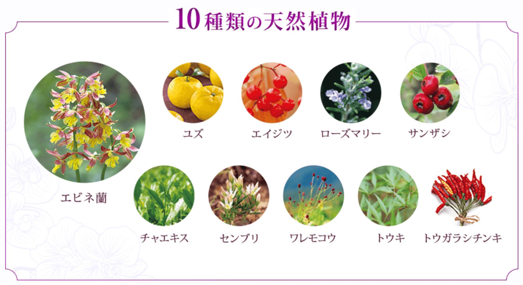 花蘭咲に使われている10種類の天然植物
