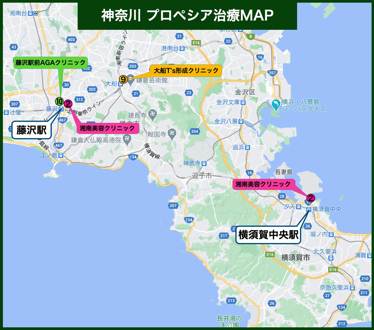 神奈川 プロペシア治療MAP